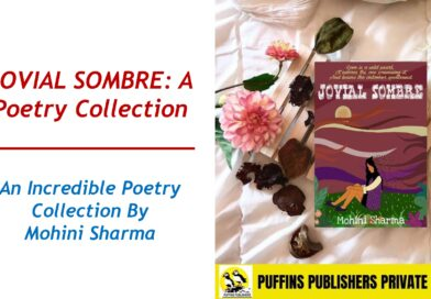 JOVIAL SOMBRE – An Incredible Poetry Collection By Mohini Sharma